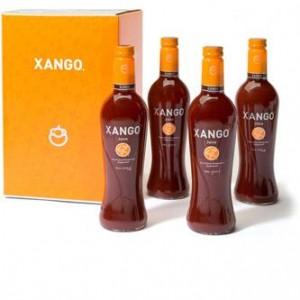 XanGo Logo image