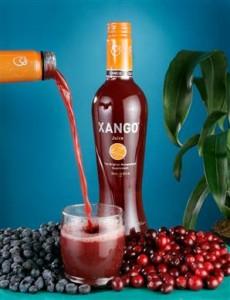 XanGo Review image