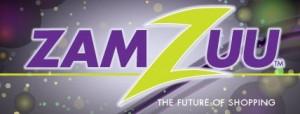 ZamZuu Review image