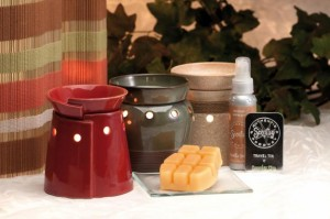 Scentsy Product Review image